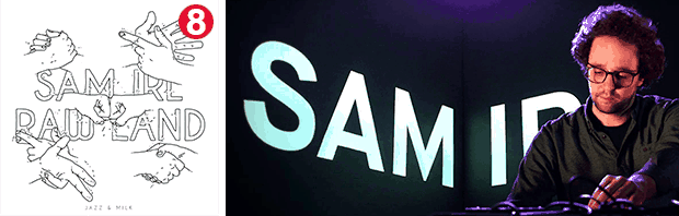 Sam IRL's Raw Land