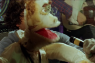 Parquet Courts Brood With Puppets in 'Human Performance' Video
