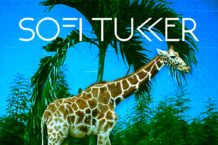 sofi-tukker-deja-vu-affair-soft-animals-new-ep-stream