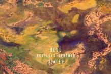 blue_states