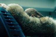 Beyoncé's 'Lemonade' Is Nominated for Four Emmys
