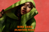 M.I.A. Continues the Album Rollout With 'Bird Song (Blaqstarr Remix)'