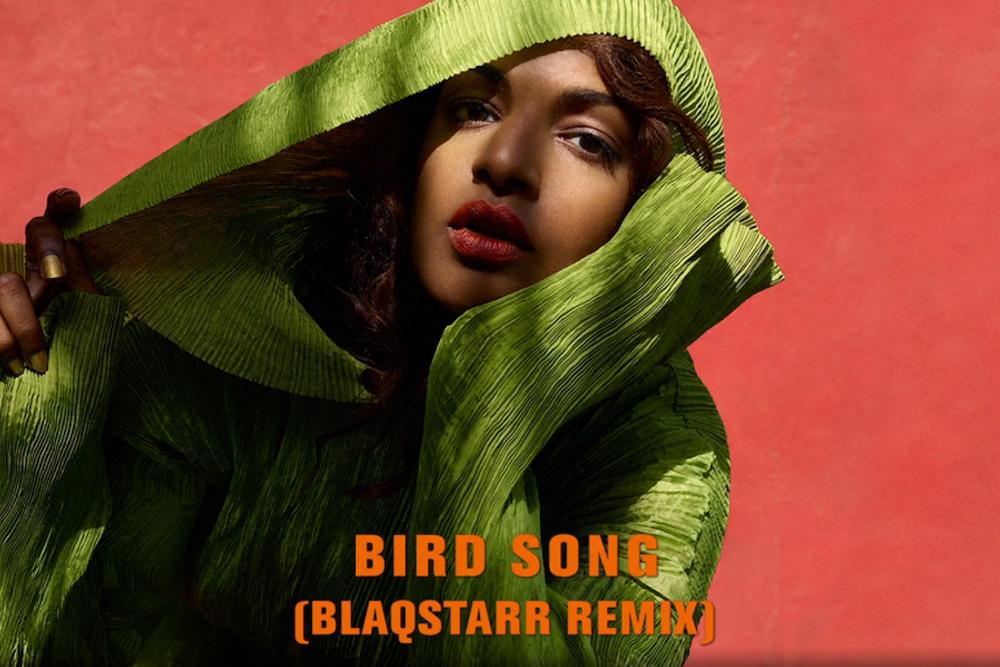MIA Bird Song