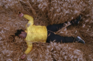 "Sampha Runs from Hounds, Falls from Tree in ""Blood on Me"" Video"