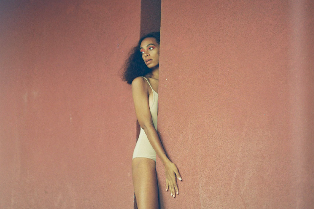 solange a seat at the table book