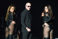 "Report: Pitbull Got Paid $1 Million By Florida Tourism Marketers to Advertise ""Sexy Beaches"""