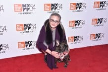 54th New York Film Festival -