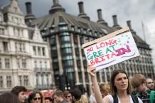 Anti-Brexit Protestors Gather At Parliament