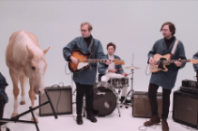 real estate new album in mind darling video