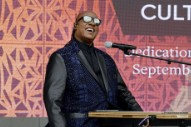 "Stevie Wonder Says He's Going to ""Reveal the Truth"" About His Sight"