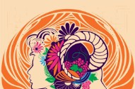 Monterey Pop Announces Lineup for 50th Anniversary Festival: Father John Misty, Kurt Vile, Jim James, and More