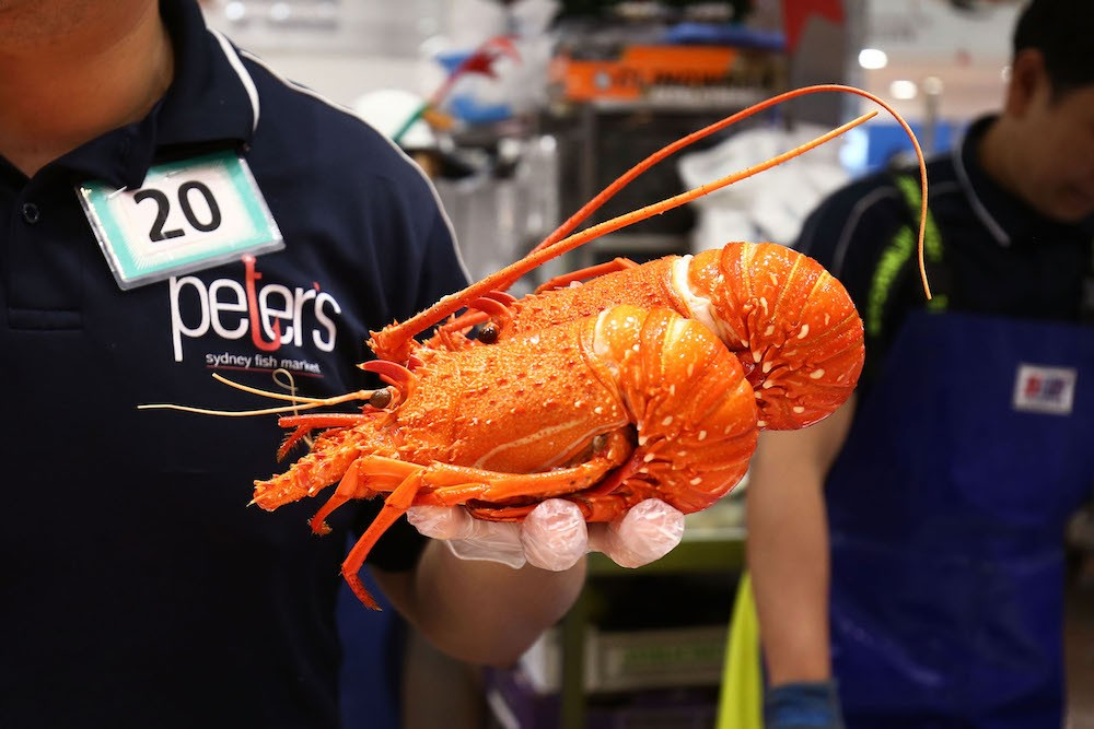 Sydneysiders Stock Up For Christmas At Sydney Fish Markets