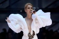"Watch Celine Dion Perform ""My Heart Will Go On"" at 2017 Billboard Music Awards"