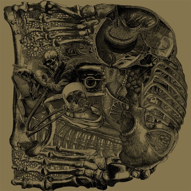 boris-dear-album-art-1494363586