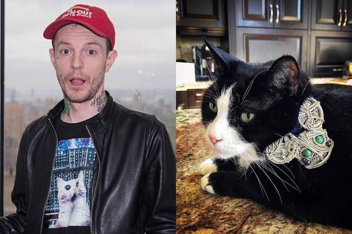 deadmau5-meowingtons-trademark-lawsuit-countersuit-cat-name-1494870669