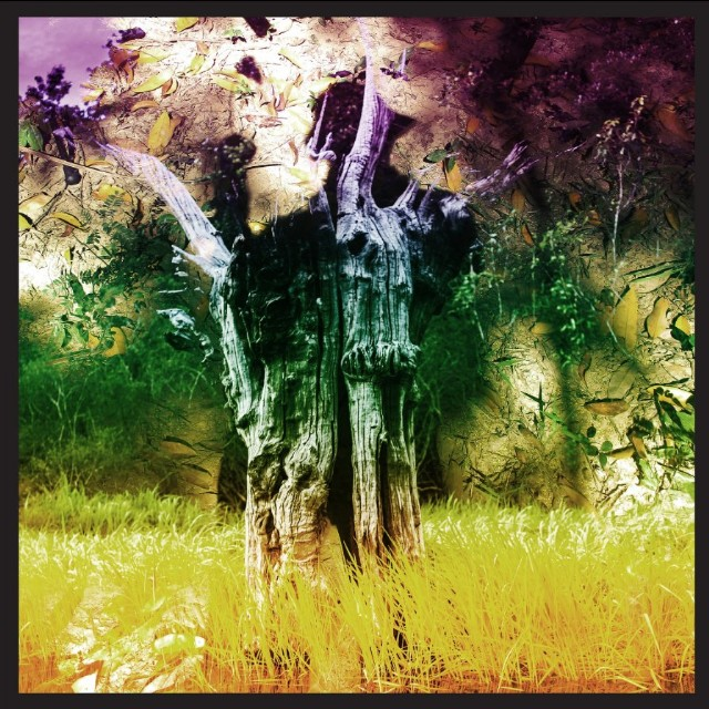 Stream Animal Collective S Meeting Of The Waters Ep Spin