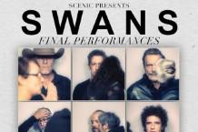 swans-final-2017-1495048842