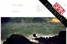 FleetFoxesArt-1497623049