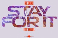"RL Grime – ""Stay for It"" ft. Miguel"