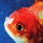 Review: On the Excellent <i>Big Fish Theory</i>, Vince Staples Bleeds Onto the Dance Floor