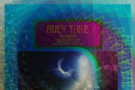 Review: Avey Tare's <i>Eucalyptus</i> is a Lovely, Low-Key Return to Animal Collective's Acoustic Era