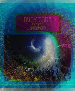 Review: Avey Tare - 'Eucalyptus'