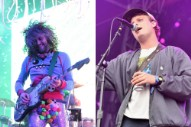 Wayne Coyne Announces Mac DeMarco/The Flaming Lips Split EP