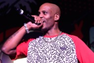 DMX Pleads Guilty to Tax Evasion, Faces Up to 5 Years in Prison