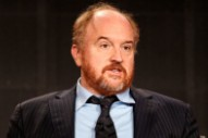"Louis C.K. on Sexual Misconduct Claims: ""These Stories Are True"""