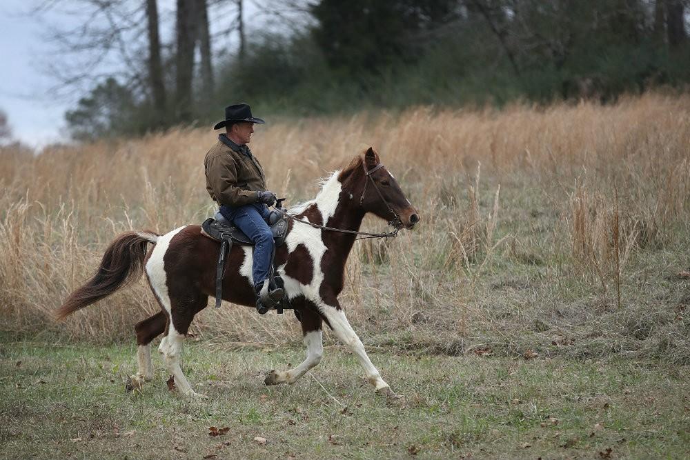 Roy Moore Has No Idea How to Ride a Horse