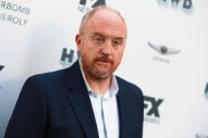 Louis C.K. Animated Comedy <i>The Cops</i> Scrapped at TBS in Latest Harassment Fallout