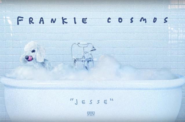 frankie-1515691785