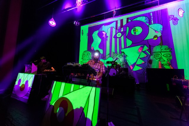 Animal Collective In Concert