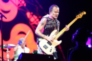 Title and Release Date Announced for New Flea Memoir