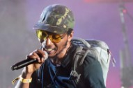Del The Funky Homosapien Hospitalized After Falling Offstage at Gorillaz Show in Denmark