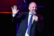 Louis C.K. Receives Standing Ovation in Return to Stand Up