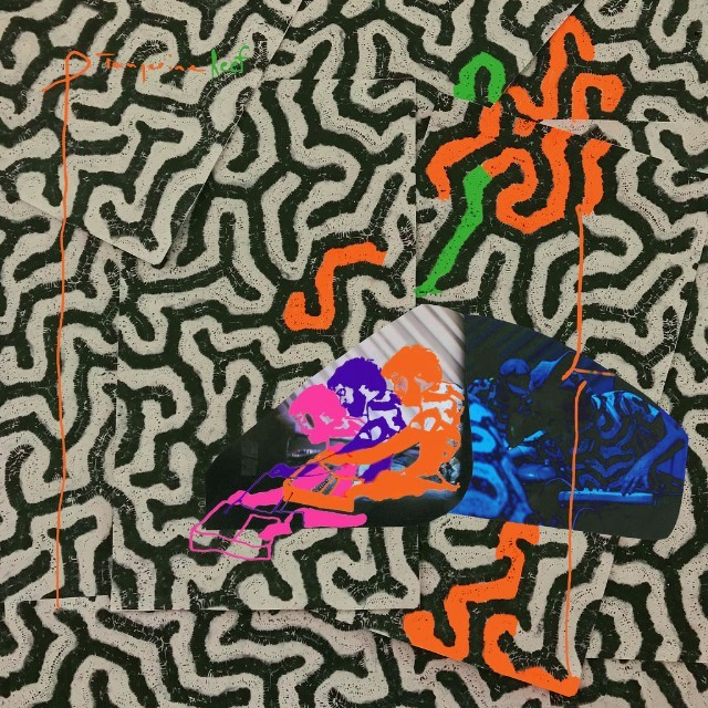 animal-collective-new-album-tangerine-reef-stream-apple-spotify