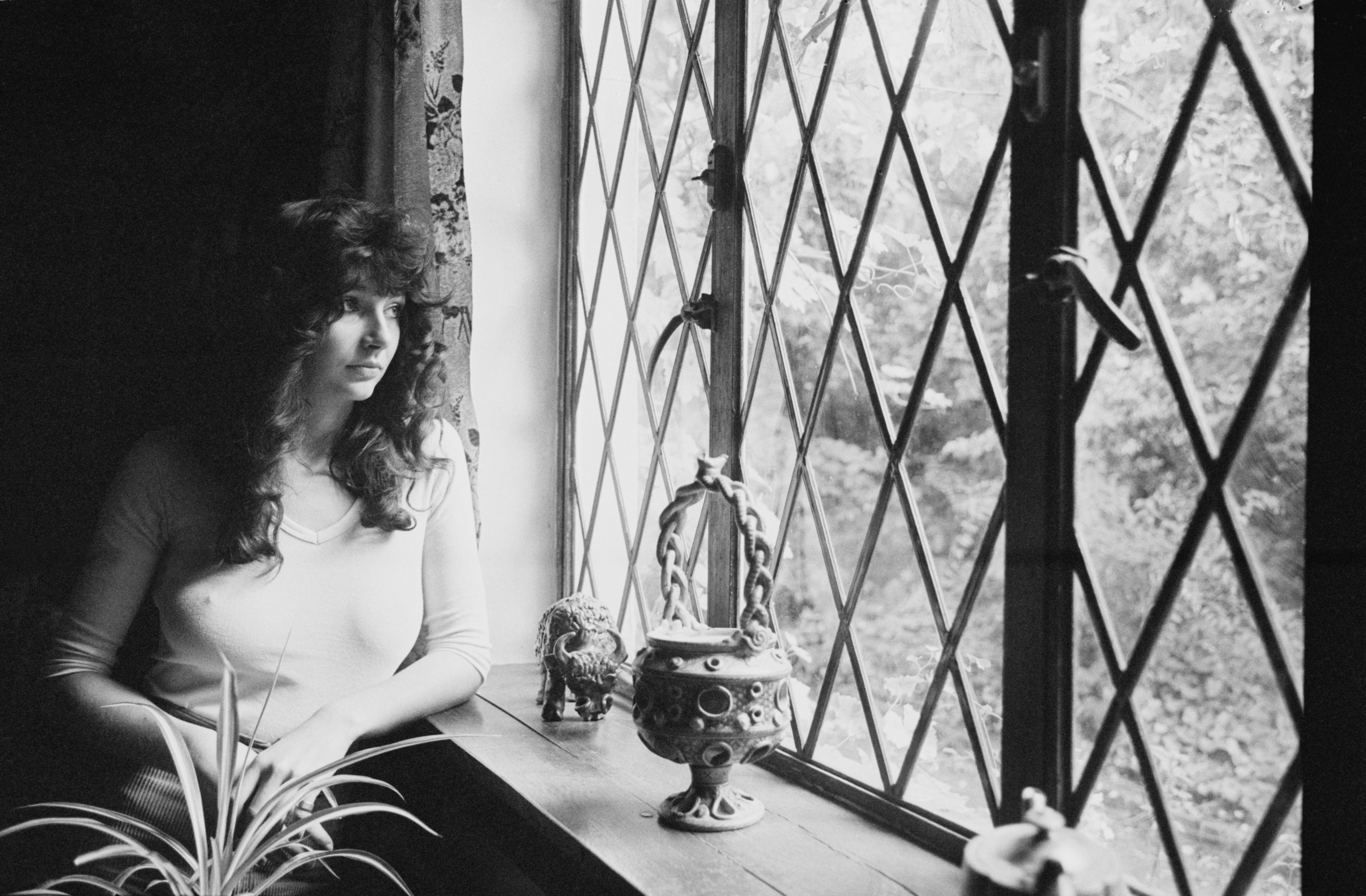 kate bush 'how to be invisible' book