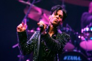 """Prince – """"Why the Butterflies"""" (Demo)"""