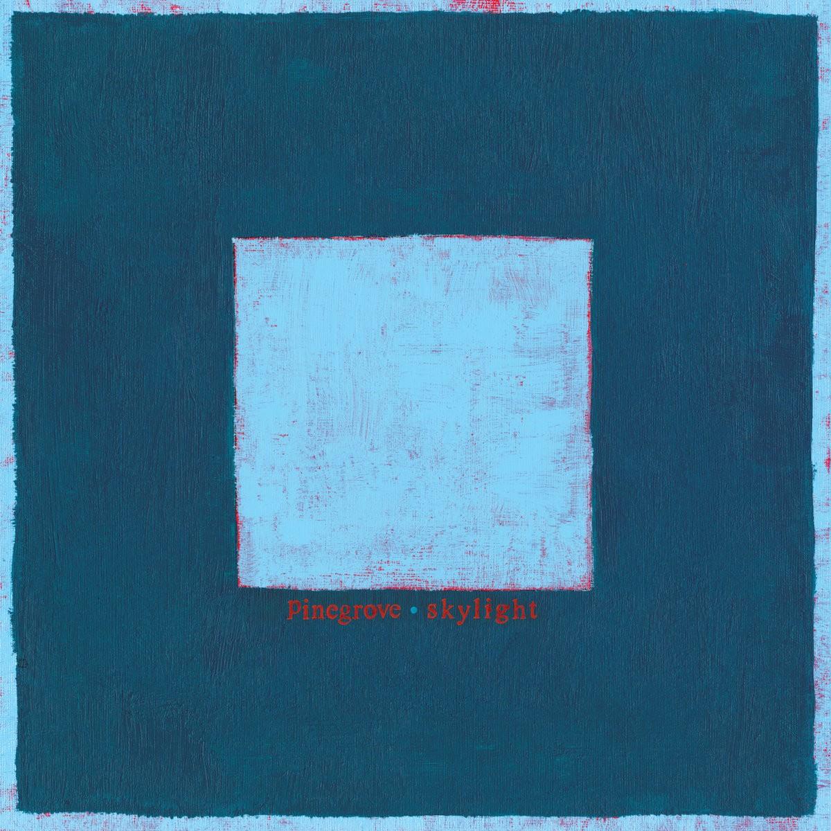 pinegrove skylight album review