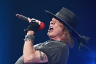 "Guns N' Roses Cut Concert Short After Axl Rose Falls ""Severely Ill"""