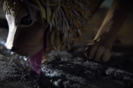 "Neko Case Releases ""Last Lion of Albion"" Video, Announces New North American Tour Dates"