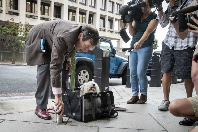 Randy Credico and the Dog Roger Stone Allegedly Tried to Kidnap