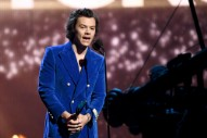 Harry Styles Could Play Elvis in Baz Luhrmann Biopic