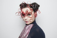Björk Is Re-Releasing <i>Vulnicura</i> As a VR Experience