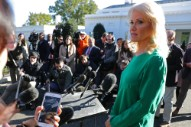 Kellyanne Conway Freaks Out on Another Reporter for Doing His Job