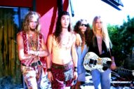 <i>Facelift</i> Turns 30: Musicians Salute Alice in Chains' Debut Album