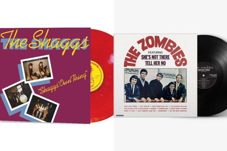 SHAGGS-_-ZOMBIES-1600437053