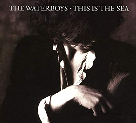 the-waterboys-this-is-the-sea-1607222884