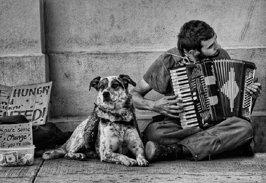 An unnamed musician and a dog in New Orleans